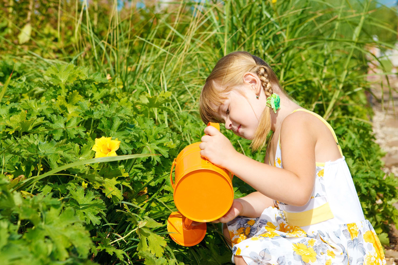 10 estrategias para estimular la curiosidad en los niños